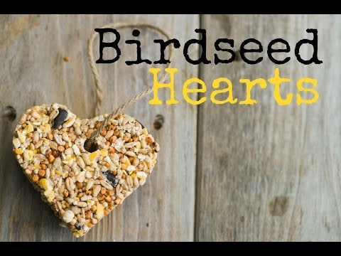 How to Make Birdseed Hearts