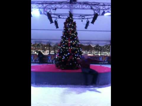 Bluewater Ice Rink