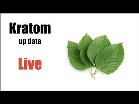 Kratom up date Q&A Live Stream