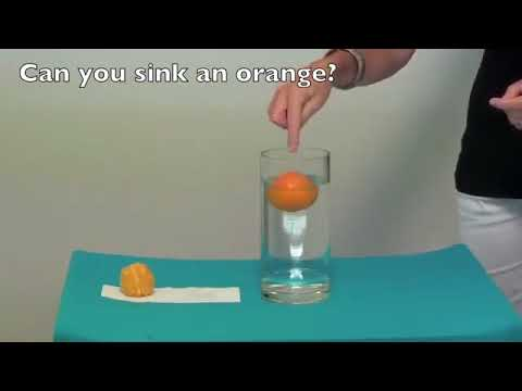 Simple Science Experiments did you now 2017 18 Latest