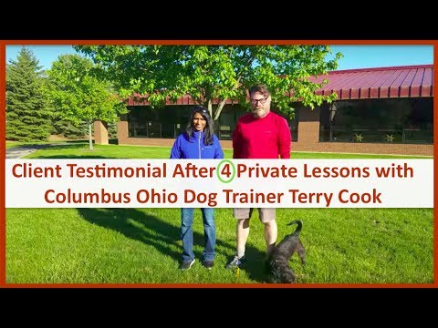 Columbus Ohio Dog Training Client Review After 4 Private Lessons with Terry Cook