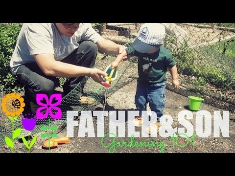 Father & Son Gardening 101