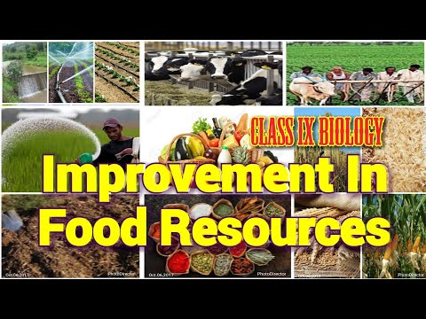 Improvement In Food Resources Class 9 Biology Full Chapter