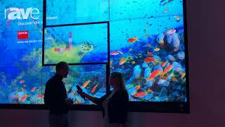Sara Abrons Interviews Barco Engineer Tom Dewaele, Designer of the UniSee LCD Video Wal