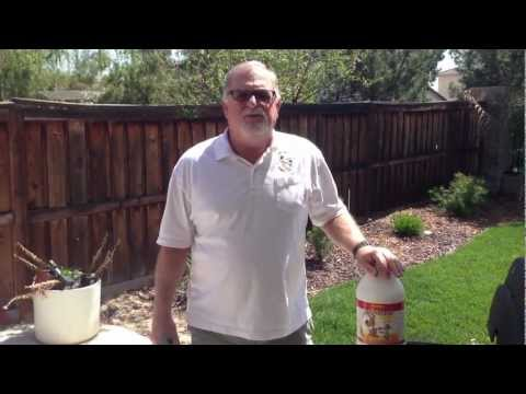 How to remove urine and feces odor from grass