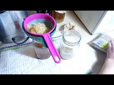 How to Make Water Kefir.
