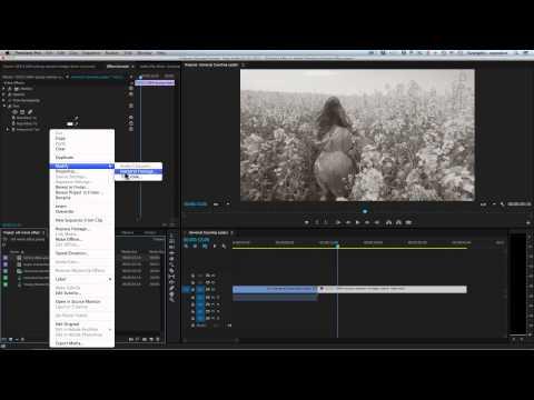 Premiere Tutorial: Old Movie Effect in Adobe Premiere