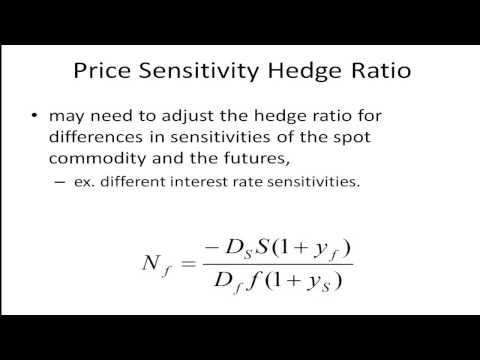 Hedge Ratio