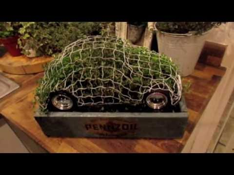 How to fill a topiary frame.