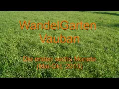 Urban Gardening in Freiburg - WandelGarten Vauban