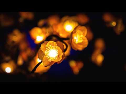 romancing the light