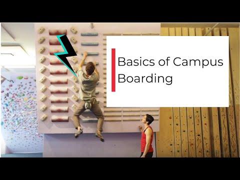 Basics of Campus Board