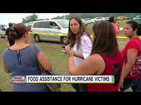 Thousands at Pasco County Fairgrounds for Hurricane Irma D-SNAP food assistance program