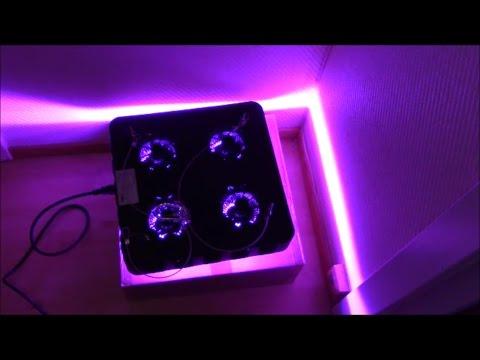 Unboxing COB LED 200w Growlight