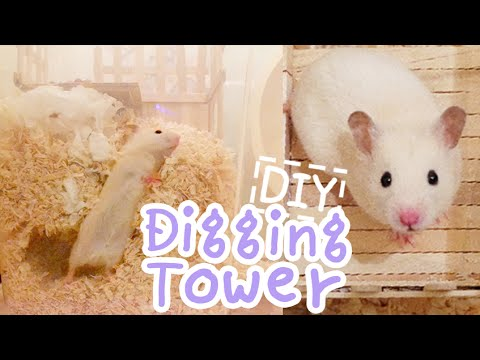 Digging Tower ☆HAMSTER DIY☆