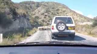 Cyprus traffic