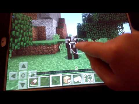Changing my name & MINECRAFT PE 1#