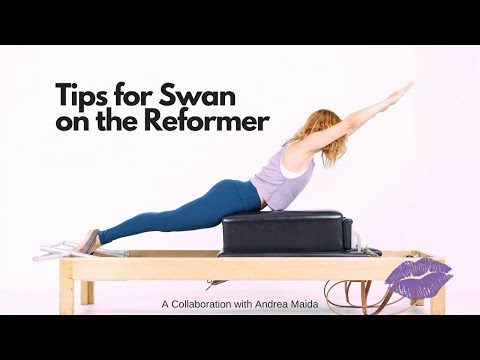 Tips for Swan on the Reformer - Lesley Logan Pilates