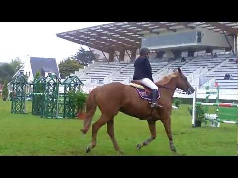 small rider , big Horse and a very scary course