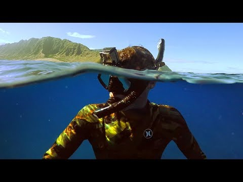 Freediving Power Plant in Hawaii! (Almost Died) | DALLMYD