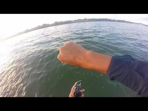 Wade Fishing Copano Bay in Rockport TX
