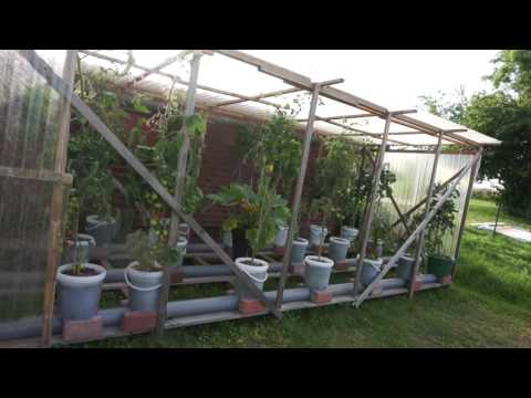Hybrid Rain Gutter Grow System From Germany! Awesome Setup!