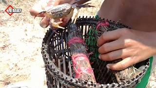 Smart Children Catch Crab Using Bamboo Net Trap - How To Catch Crab In Cambodia