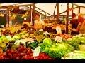 Download           Venice Rialto Market by The Tourism School MP3,3GP,MP4