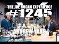 Joe Rogan Experience 1245 Andrew Yang