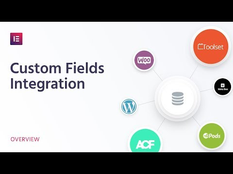 Introducing Custom Fields Integration: Build More Advanced Sites Without Coding