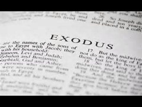 Exodus 32 Daily Bible Reading with Paul Nison