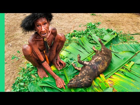 Xxx Mp4 RARE TRIBAL FOOD Of West Papua 39 S Dani People Never Seen On Camera Before 3gp Sex