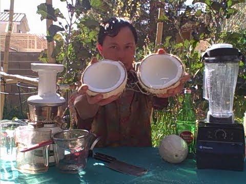 Is a Blender or Juicer Best to Make Coconut Milk & Other Nut Milks?