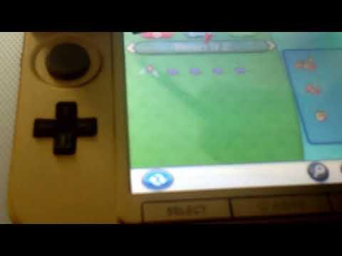 Pokemon x/y breeding 5 perfect IV's charmander