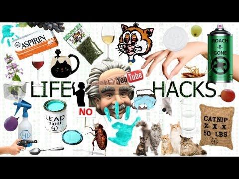 Life Hacks Ep. 3- Roaches, Rasp, and Vitis
