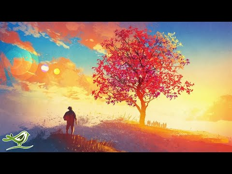 Bright Future - AVAILABLE NOW | Relaxing Piano Music Album