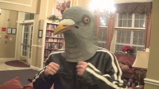 Pigeon Poker Party Episode 8 All Choked Up
