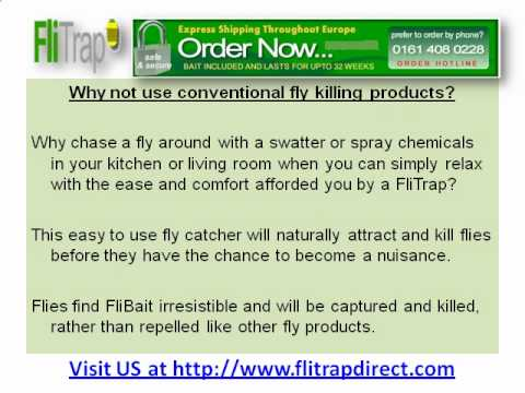 Prepare and Prevent Flies from getting into your House