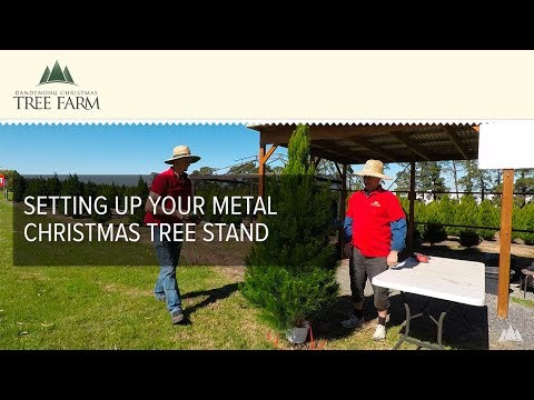 Setting Up Your Metal Christmas Tree Stand