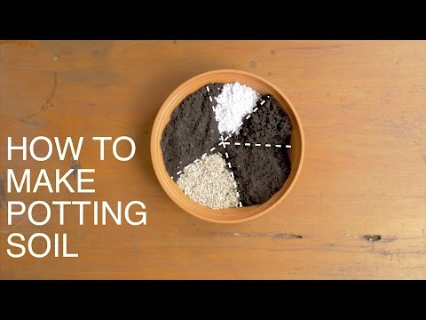 Watch how to make perfect potting soil
