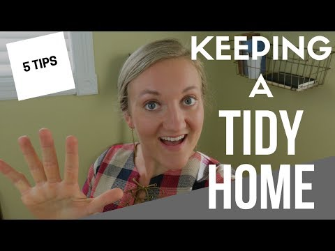 5 TIPS FOR A CLEAN AND TIDY HOME | HABITS FOR KEEPING A HOUSE CLEAN | SPEED CLEANING