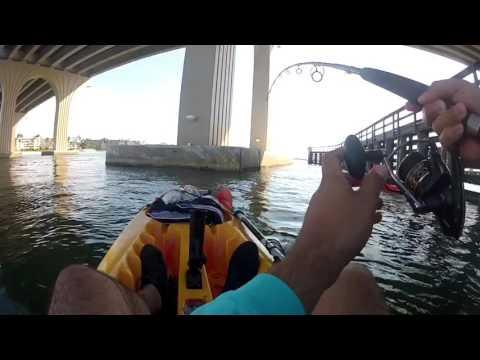 Kayak fishing Tampa Bay perception sport 11.5