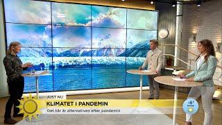"""Naturen återhämtar sig i pandemin """"Men det räcker inte""""  - Nyhetsmorgon (TV4)"""