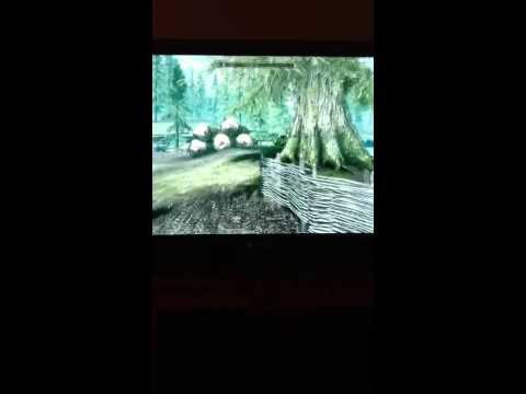 Skyrim:easy way to get a follower that is good