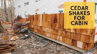 Cedar Siding Time - Cabin Build Ep.19