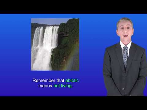 GCSE Science Biology (9-1) The Water Cycle