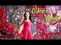 Download Ore soniyo odia song MP3,3GP,MP4