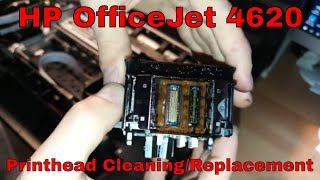 Replacement and Reset of Waste Ink Absorber and Counter of Epson XP