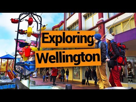 Exploring Wellington City - New Zealand's Biggest Gap Year – Backpacker Guide New Zealand