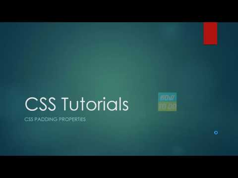 CSS Tutorials - Padding Properties